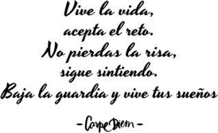 vinilo-decorativo-texto-carpe-diem-6779